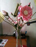 MPBlog-fleur